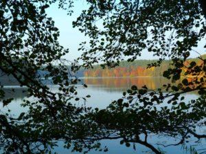 jezioro trzesniowskie - zanim opadna liscie 10