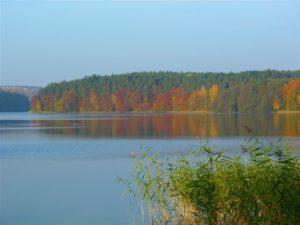 jezioro trzesniowskie - zanim opadna liscie 12