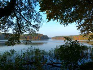 jezioro trzesniowskie - zanim opadna liscie 15.4jpg