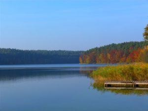 jezioro trzesniowskie - zanim opadna liscie 2