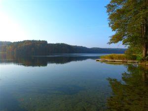jezioro trzesniowskie - zanim opadna liscie 5